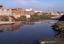 Assessment of Chemically Polluted Sites in Pakistan