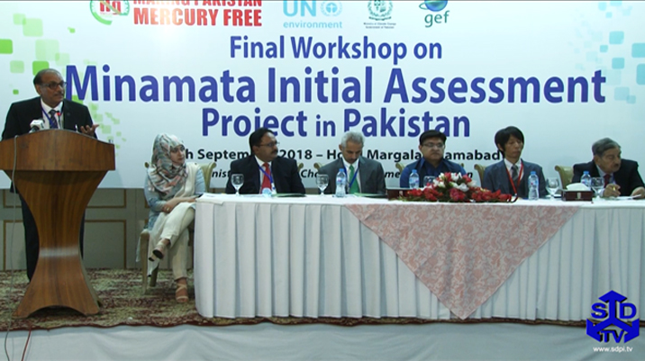 Final Workshop for the Project on the Development of Minamata Initial Assessment in Pakistan